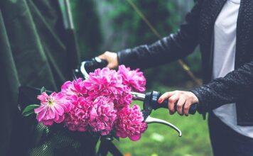 jakie kwiaty dla dziewczyny